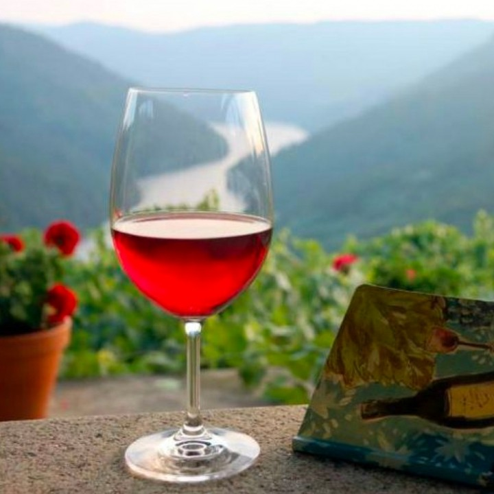 Guided wine tasting